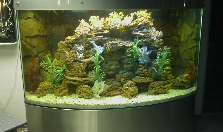Украшаем аквариум своими руками