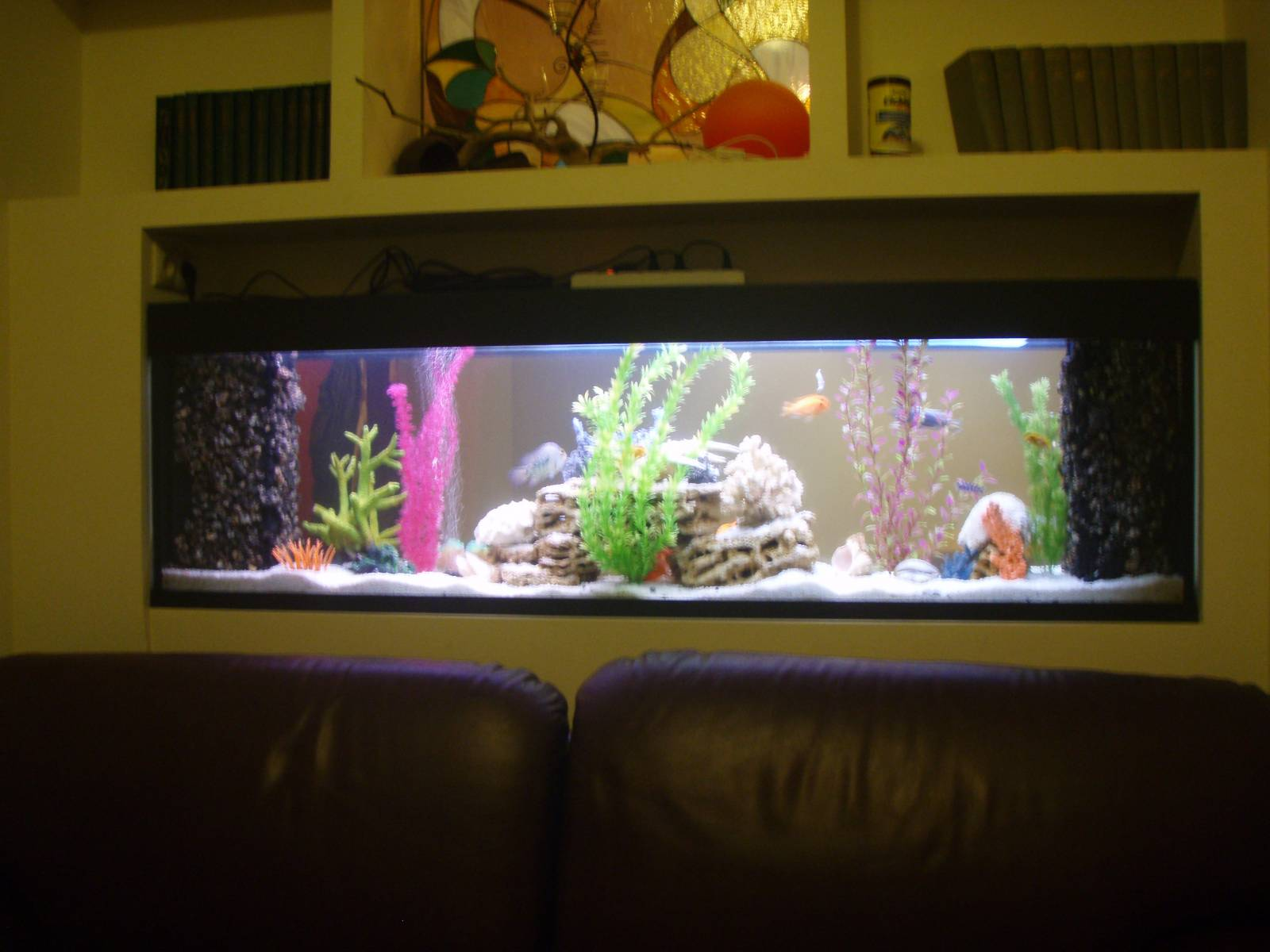Аквариум своими руками в домашних условиях фото