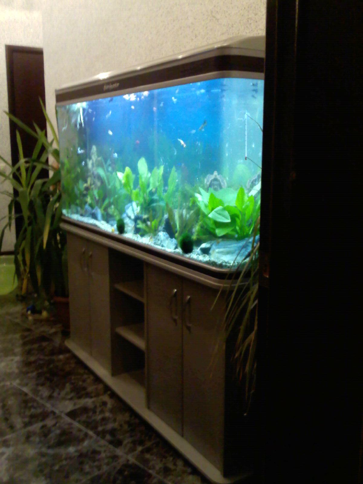 Как сделать крышку для аквариумы